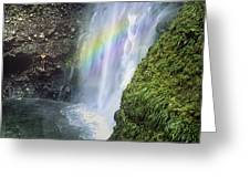 Haines Falls Island Of Dominica Greeting Card