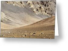 Haleakala Crater Floor Greeting Card