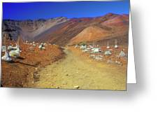 Haleakala Sliding Sands Volcano Trail Silverswords Greeting Card