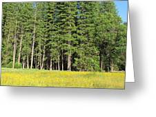 Half Dome Meadow Greeting Card