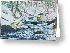 Hamburg Mountain Stream Greeting Card