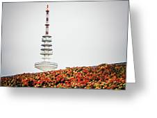 Hamburg - Tv Tower Greeting Card