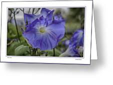 Hameau Bleu Greeting Card