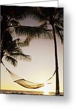Hammock Greeting Card