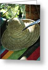 Hammock Greetings Greeting Card