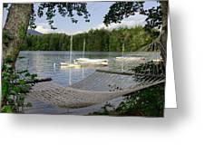 Hammock On Lake Winnipesaukee, Nh Greeting Card