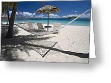 Hammock On The Beach Greeting Card