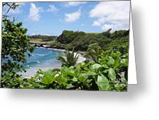Hamoa Beach Tropical Hana Maui Hawaii Waves And Surfers Greeting Card