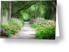 Hampton Park Path Greeting Card