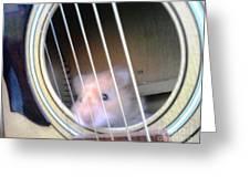 Hamster Strings Greeting Card