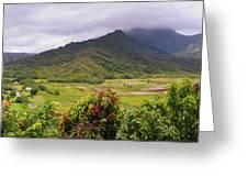 Hanalei Valley Panorama Greeting Card