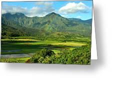 Hanalei Valley Rainbow Greeting Card