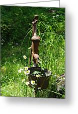 Hand Pump In The Spring Greeting Card