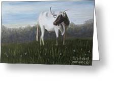 Handsome Longhorn Greeting Card