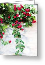 Hangin Roses Greeting Card