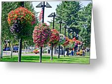 Hanging Flower Baskets In A Park Greeting Card