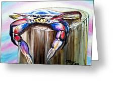 Hanging In There Crab Greeting Card by Terry J Marks Sr