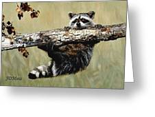 Hanging On Greeting Card by Janet Moss
