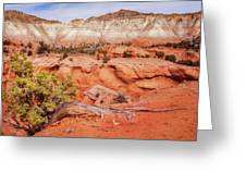 Hanging On The Cliff At Kodachrome Basin State Park Greeting Card