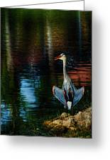 Hanging On The Rocks Greeting Card