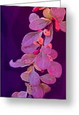 Hanging Purple Greeting Card