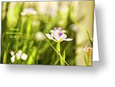 Happy Anniversary African Iris Greeting Card