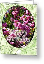 Happy Birthday - Greeting Card - Almond Blossoms No. 1 Greeting Card