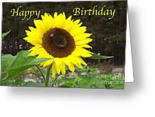 Happy Birthday - Greeting Card - Sunflower Greeting Card
