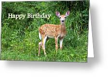 Happy Birthday 1 Greeting Card