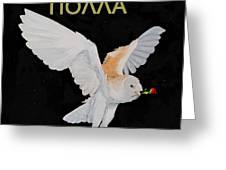 Happy Birthday Barn Owl Greek Greeting Card