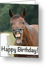 Happy Birthday Smiling Horse Greeting Card