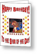 Happy Birthday To The Star Of The Day Greeting Card