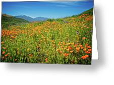 Happy Days In Walker Canyon Greeting Card