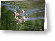 Happy Ducks On The Pond Greeting Card