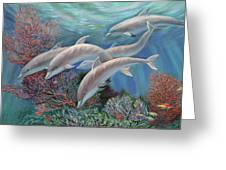 Happy Family - Dolphins Are Awesome Greeting Card