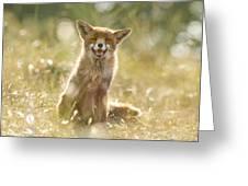 Happy Fox Is Happy Greeting Card