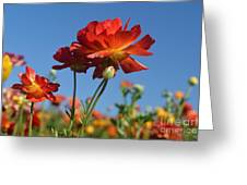Happy Mother's Day Flowers Greeting Card