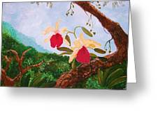 Happy Orchids Greeting Card by Alanna Hug-McAnnally