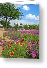 Happy Trail At The Farm Greeting Card