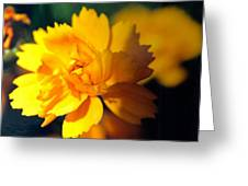 Happy Yellow Flower Greeting Card
