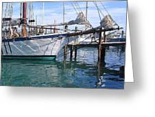 Harbor Scene Key West Greeting Card