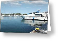 Harbor With Yacht And Boats Greeting Card
