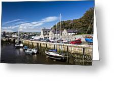 Harbour At Port Erin Greeting Card