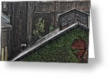Hard Rain Greeting Card