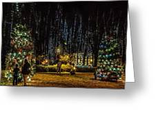 Harding Christmas Postcard Greeting Card