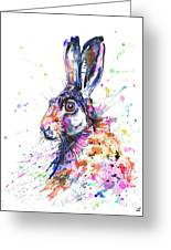 Hare In Grass Greeting Card