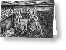 Hare Line Greeting Card by Peter Piatt