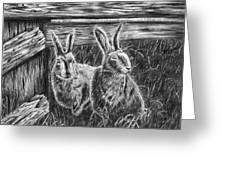 Hare Line  Greeting Card