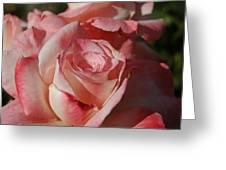 Harlekin Rose Greeting Card