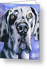 Harlequin Great Dane Greeting Card